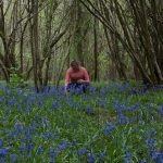 Bluebell Picking Small